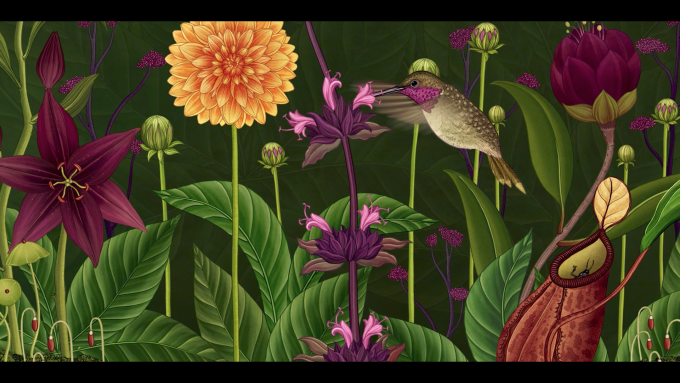 Still-frame-from-Azuma-Makoto-Story-of-Flowers-showing-a-humming-bird-collecting-nectar-from-a-flower-680x383
